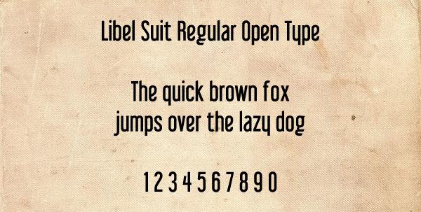 Libel Suit