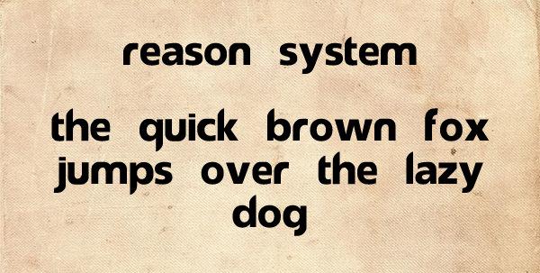 Reason System