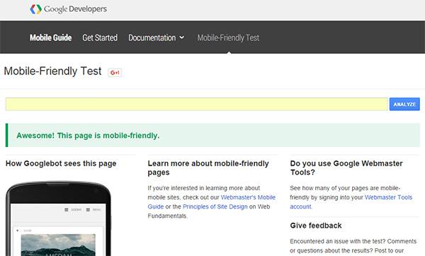 Google MobileFriendly Test Tool