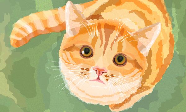Create a Watercolor Cat in Illustrator